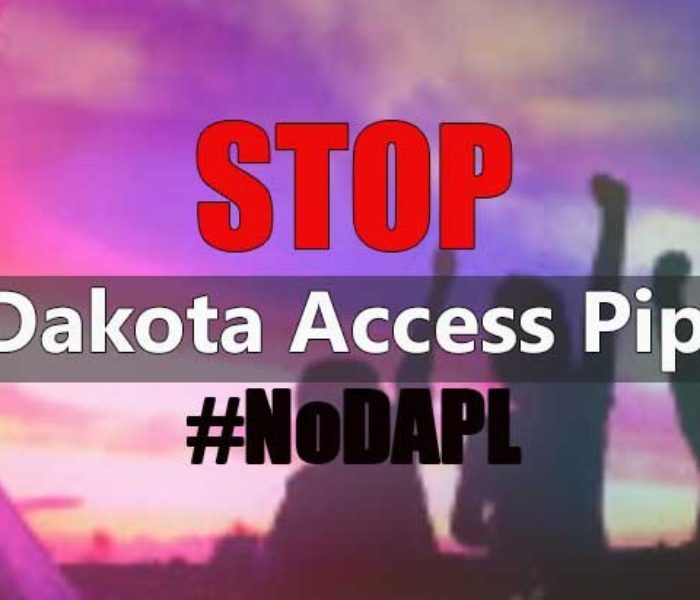 Ways You Can Help the Standing Rock Sioux Fight the Dakota Access Pipeline